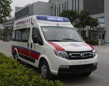 東風御風監護型救護車