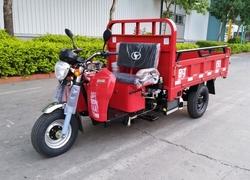 山东时风7Y-11100DA型自卸三轮汽车